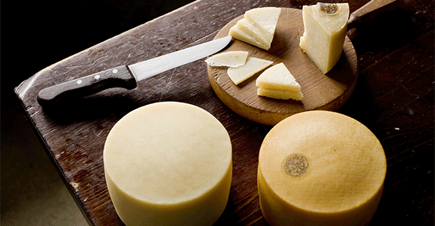 Idiazabal Cheese from Spain