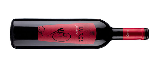 Graciano grape. Ilurce winery
