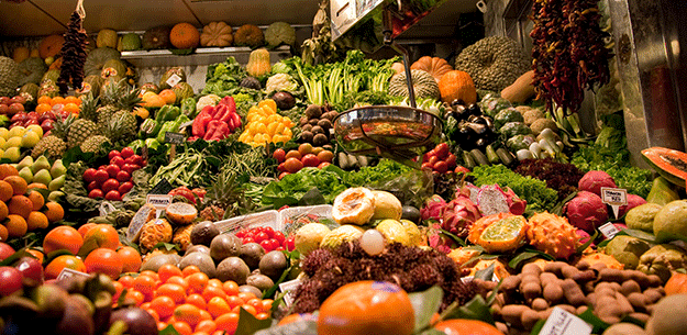 Exports of Spanish Agri-Food Products Reach New Highs