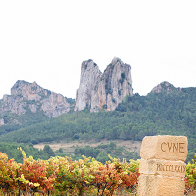 CVNE Expands into New Wine Regions with 3 New Wineries / @CVNE