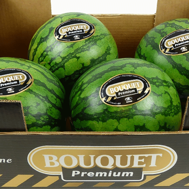 Watermelons from Spain. Photo by: ANECOOP