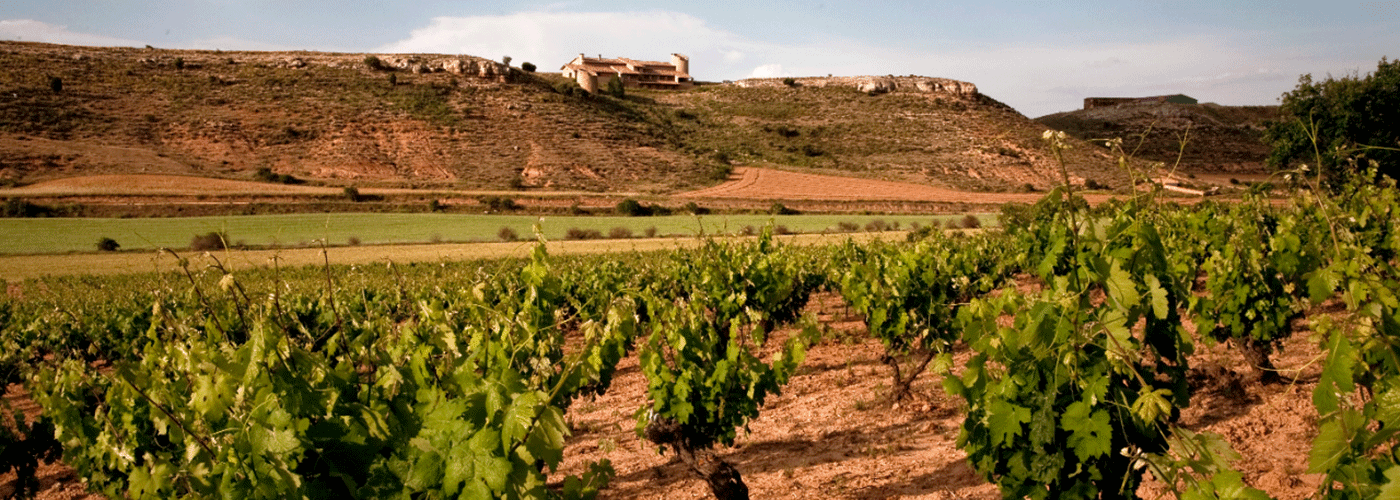 Vineyards in the Ribera del Duero. Photo by: Pablos Neustadt/@ICEX